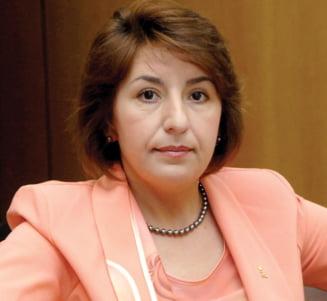 Sulfina Barbu: regionalizarea se va face dupa alegerile din 2012