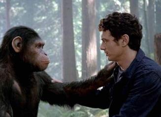 Suntem chiar asa de diferiti de primate? Afla ce anume ne diferentiaza