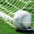 Surprize in Liga 1: Rezultatele inregistrate in meciurile de sambata