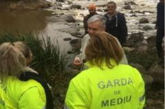 Sute de pesti morti plutesc pe raul Timis. Garda de Mediu a ridicat mai multe probe, iar pescarii arata cu degetul catre statia de epurare de la Jabar