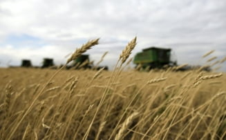 Tabara: Nerezidentii sa nu aiba dreptul la teren agricol pana in 2020