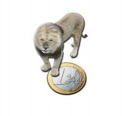 Tanar inselat cu 600 de euro la schimbul valutar