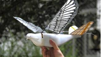 Tara care vrea sa foloseasca pasari-robot, care pacalesc si zburatoarele reale, pentru a-si spiona cetatenii