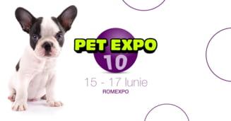Targul dedicat animalelor de companie, PetExpo, isi deschide portile pe 15 iunie