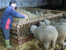Taxe noi pentru agricultori. Noul sistem de impozitare naste controverse