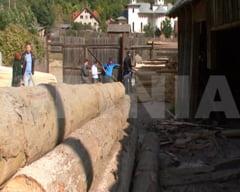 Teapa de 3.000.000 de lei dupa ce au facut afaceri cu lemn in Lopatari, Manzalesti si Vintila Voda