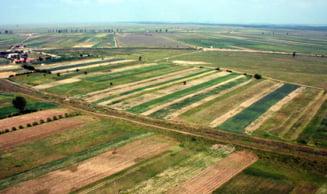 Terenurile agricole din Romania, la mare cautare