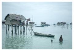 Tiganii marii din Borneo - Cum traiesc nomazii apelor (Galerie foto)