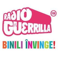 Toata echipa Radio Guerrilla, declaratii la notar: Daca vreunul a fost, e sau va fi ofiter acoperit, plateste daune de 100.000 de euro