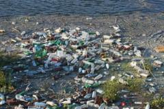 Tone de gunoaie sufoca malul Dunarii in dreptul orasului Galati. Nu exista utilaje cu care sa se curete mizeria