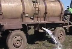 Tone de lapte aruncate pe camp: Isteria aflatoxinei, cauzata de interese externe?