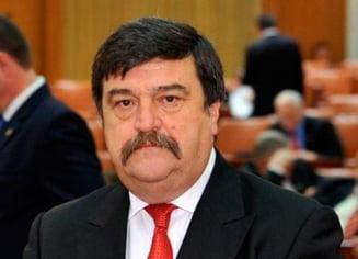 Toni Grebla: Morar si Kovesi, la comisia senatoriala de ancheta privind referendumul