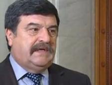 Toni Grebla, aviz favorabil pentru functia de judecator al CCR