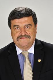 Toni Grebla, propus la CCR in locul lui Bolcas