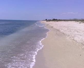 Top 3 plaje salbatice romanesti (Galerie foto)