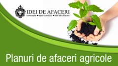 Top 5 planuri de afaceri agricole rentabile in 2015