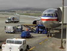 Traficul aerian pe aeroportul Kennedy, blocat de broaste testoase