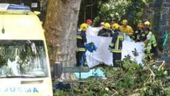 Tragedie pe Insula Madeira, unde un stejar secular s-a prabusit peste credinciosii adunati la slujba