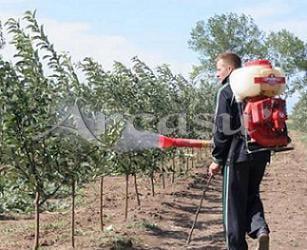 Tratament pentru pomi inaintea pornirii vegetatiei