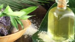Tratamente naturiste: 5 masti cu ulei de ricin care opresc caderea parului toamna
