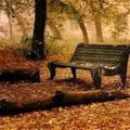 Trateaza naturist astenia de sezon