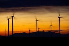 Trecerea la energie regenerabila ar putea crea 10 milioane de locuri de munca. RAPORT