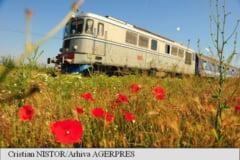 Trenurile circula cu viteza redusa din cauza caniculei; calatorii sa se informeze cu privire la modificarile din program