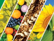 Tu cum ai grija de cultura ta? Agro Est Muntenia vine cu cele mai bune solutii
