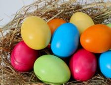 Tu stii ce mananci? Afla totul despre consumul de oua in cazul copiilor mici - sfatul nutritionistului