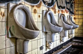 Tulcea: 16% dintre scolile din judet au toaleta in curte