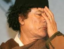 Tunisia ingheata bunurile lui Gaddafi