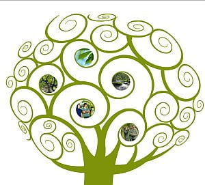 "UE lanseaza campania ""Click a Tree"""