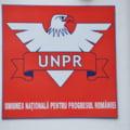 UNPR ii raspunde lui Dragnea: Decizia de a avea grupuri parlamentare proprii este fireasca