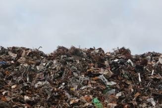 UPDATE Ancheta de amploare dupa ce un cosciug COVID a fost gasit la o groapa de gunoi de la marginea Capitalei. Ce se afla in cutia metalica