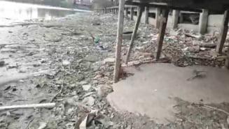 USR va sesiza Apele Romane privind deseurile si scurgerile de ape menajere din lacurile Capitalei