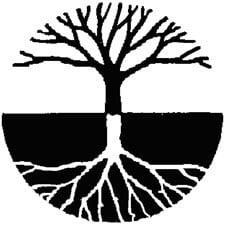 Uniunea Sarbilor din Romania USR