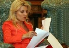 Udrea: Daca ar fi avut onoare, Sova ar fi recunoscut ca a semnat contract preferential