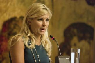 Udrea: PDL va anunta candidatul la Primaria Bucurestiului in martie
