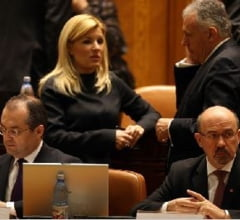 Udrea nu promite investitii noi in 2012