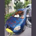 """Un șofer din Cluj și-a găsit mașina mânjită cu ketchup, alături de un mesaj misterios. """"Asta e cu dedicație de la amantă"""" FOTO"""