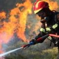 Un autoturism a ars în totalitate în Vaslui după ce a fost izbit din spate şi a intrat într-un copac