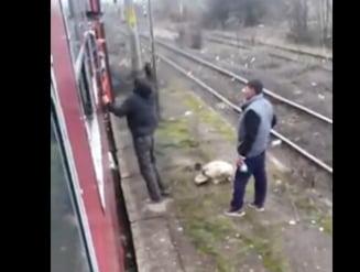 Un barbat a fost dat jos din tren si batut de controlor si cativa calatori (Video)