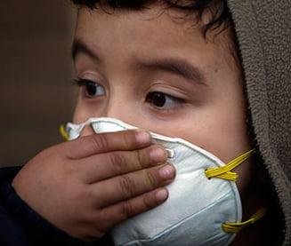 Un caine este la orginea epidemiei de ciuma pulmonara din China