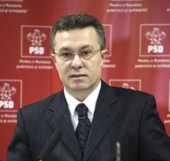 Un candidat PSD pentru partidul Elenei Udrea (Opinii)