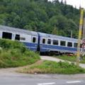 Un cioban a fost lovit mortal de tren lângă Ploiești. În accidentul feroviar au murit și 18 animale