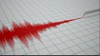 Un cutremur estimat la 4,5 pe scara Richter s-a produs miercuri seara UPDATE
