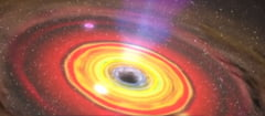 Un fizician celebru sustine ca sunt doua tipuri de calatorie in timp si unul dintre ele sigur exista