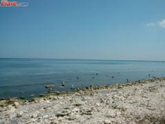 Un fost ministru al Turismului cere demisia sefei ANM: A indus panica in populatie, a golit litoralul romanesc