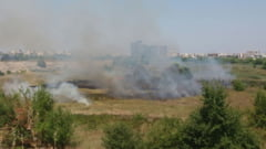Un mare incendiu a cuprins Delta Vacaresti. Pompierii s-au luptat cu focul pe 5.000 mp
