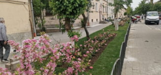 Un mini-cartier din Ramnic si-a schimbat complet aspectul: lucrari complexe de amenajare la blocurile CPL de pe strada Mihai Viteazu